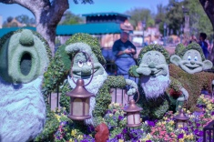 Flower & Garden - Jessamack